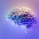 심리 성향 예측 AI 경진대회